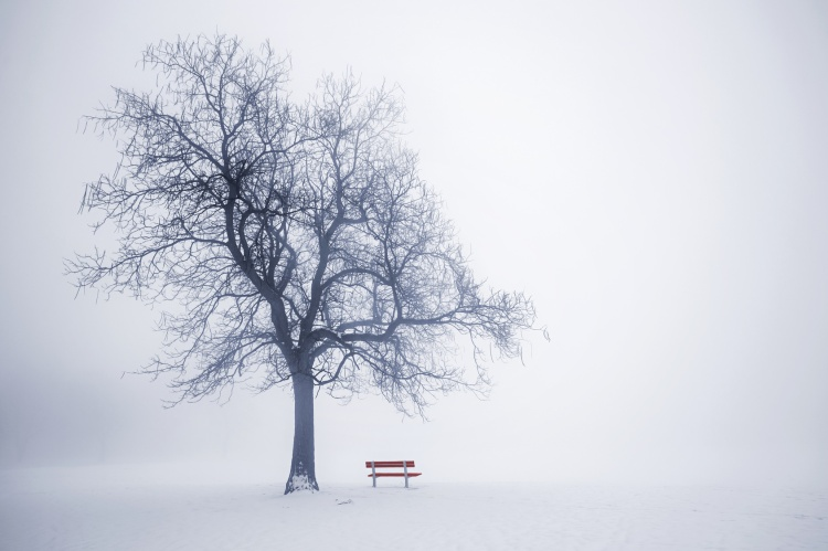 grief and winter
