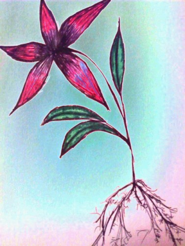 flower_uprooted_by_bellamuerte7
