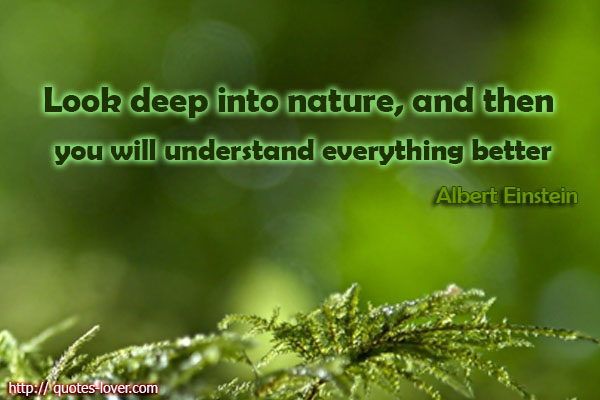 look-deep-into-nature-and-then-you-will-understand-everything-better-albert-einstein
