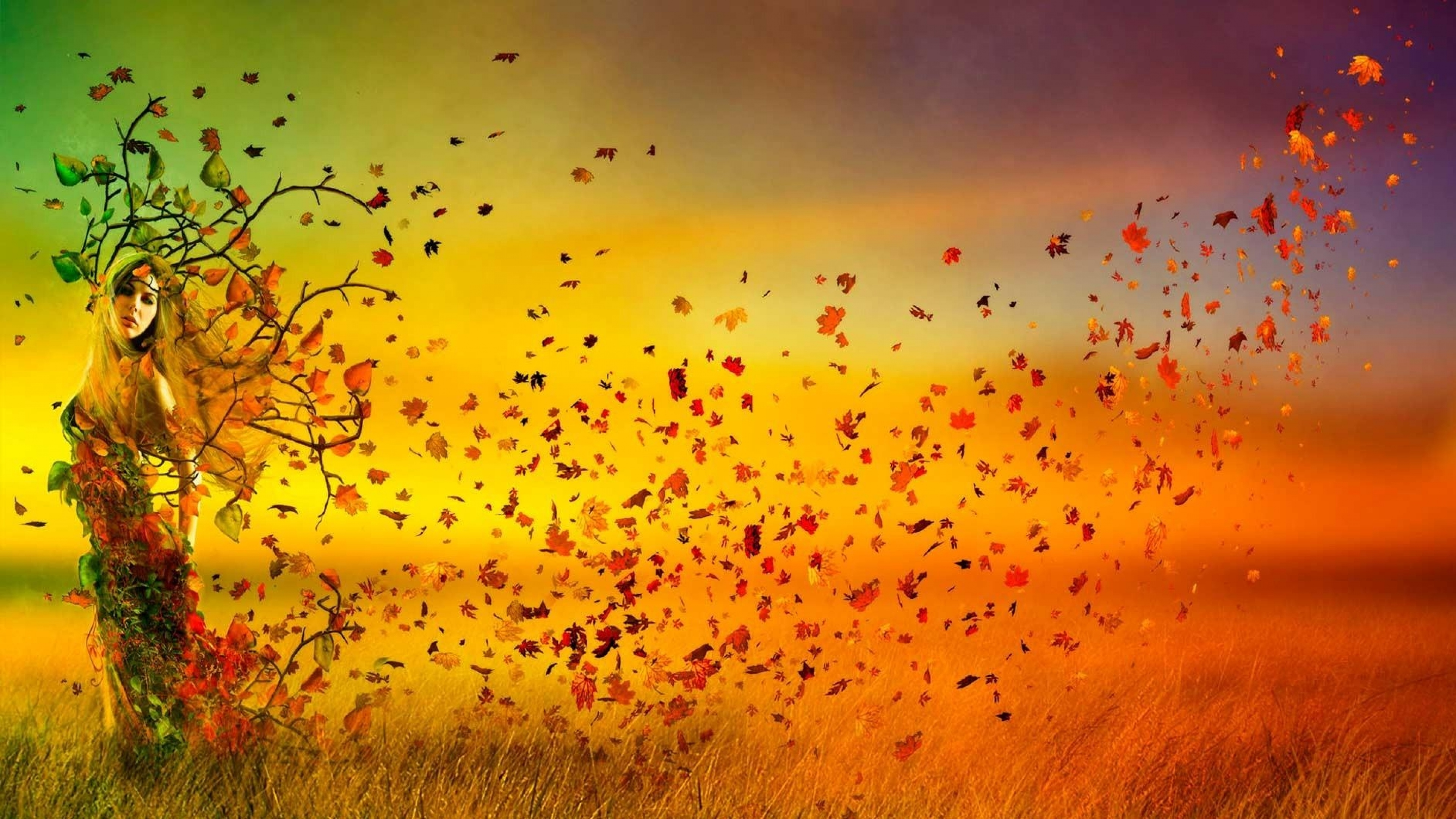 girl_branches_leaves_field_autumn_wind_68835_3840x2160