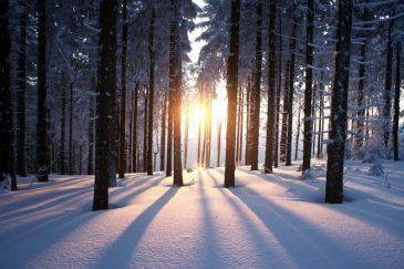 winter-solstice-facts.jpg.653x0_q80_crop-smart