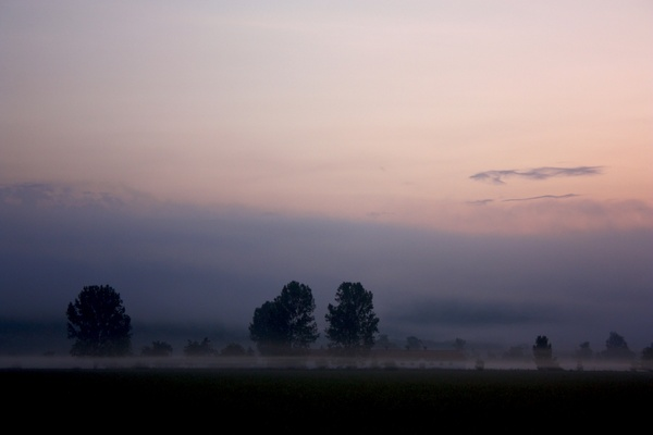 dawn_dusk_evening_fog_landscape_mist_moon_morning_604253